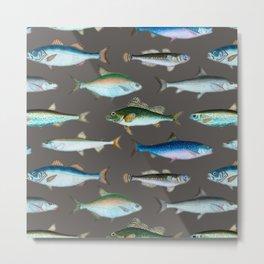 School of Fish No. 1 Metal Print