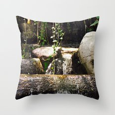 dreamy water flowing over old Asian stones Throw Pillow