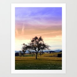 Old tree and amazing cloudy sky | landscape photography Art Print