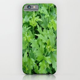 nature and greenery 16 iPhone Case