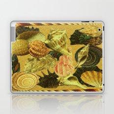 Shells of Sound Laptop & iPad Skin