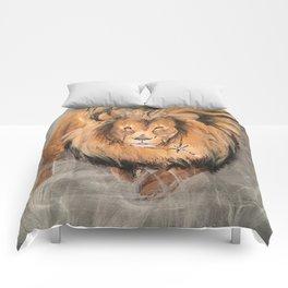 Roaring Like A Lion Comforters