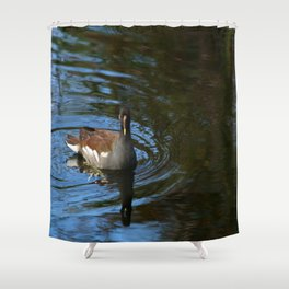 Common Moorhen Shower Curtain