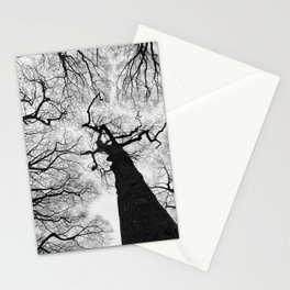 stark winter forest Stationery Cards