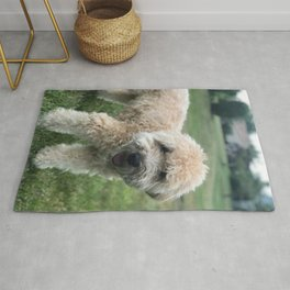 Smiling Soft Coated Wheaten Terrier Rug