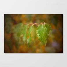 Autumn song Canvas Print