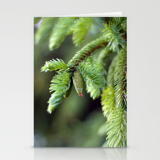 Baby Pine Cone Stationery Cards