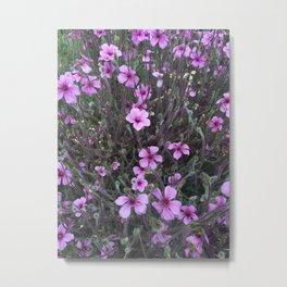Flower IV Metal Print