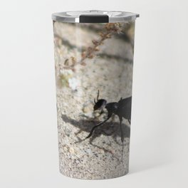 Closeup Black Blister Beetle... 2 Travel Mug