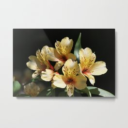 Gorgeous Yellow Blooms Metal Print