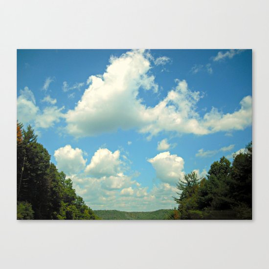 Open Wild Canvas Print