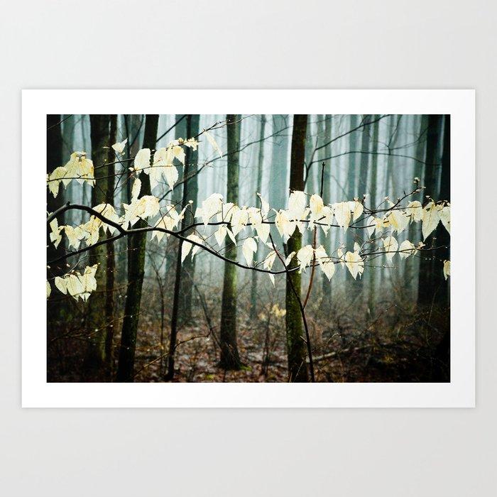 Dreams of the Sun on a Rainy Day Art Print