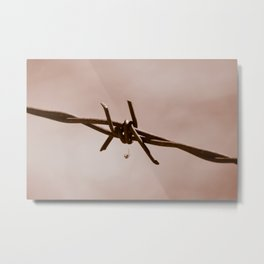 Spider on Barbed Wire Metal Print