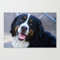 puppy Canvas Prints featuring Puppy by SachelleJuliaPhotography
