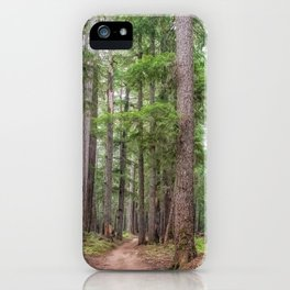 Forest Trail, Pacific Northwest, Washington State iPhone Case