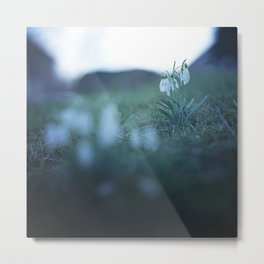 Fragility on a Hill. Metal Print