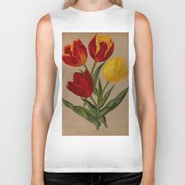 Arendsen, Arentine H. (1836-1915) - Haarlem's Flora 1872 - Single Early Tulips 4 Biker Tank