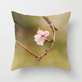 Spring Changdeokgung palace, Seoul, Korea Throw Pillow