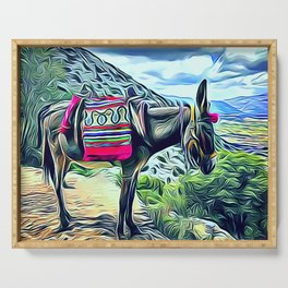 Mexican Burro Serving Tray