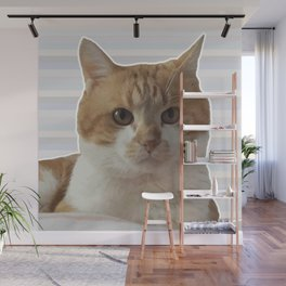 Red cat on a striped background. Wall Mural