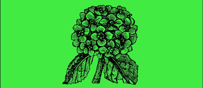 Green Hydrangea Coffee Mug