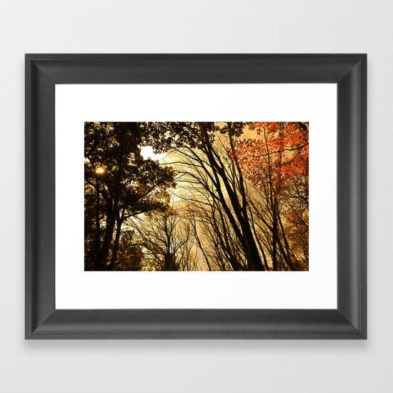 Autumn Boughs Framed Art Print
