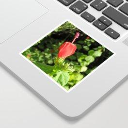 Arboretum Flower- Color Sticker