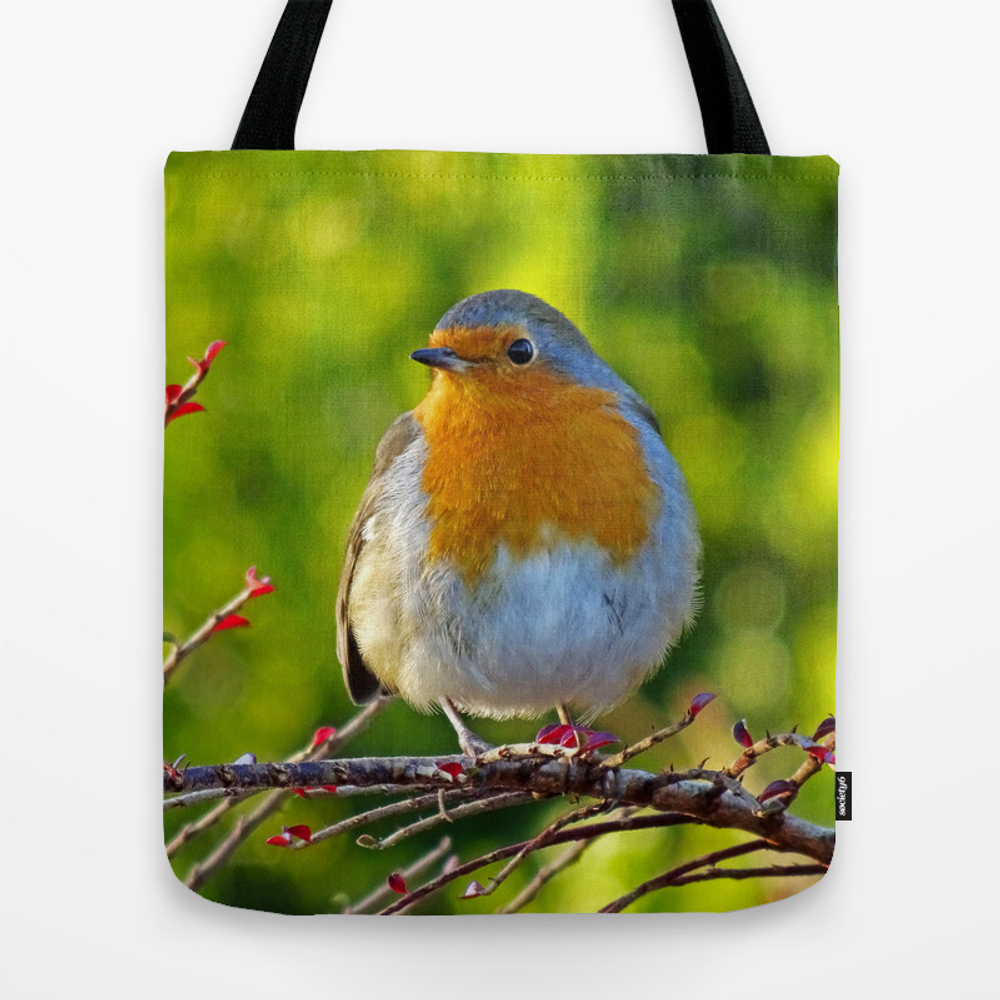 Robin Redbreast Tote Bag by Catherineogden (TBG8331014) photo