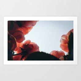 in roses Art Print