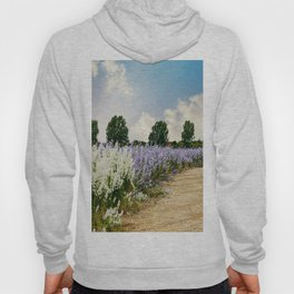 Coloured Landscape Hoody