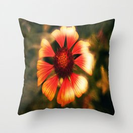 Augenblick  Throw Pillow