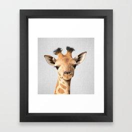 Baby Giraffe - Colorful Framed Art Print