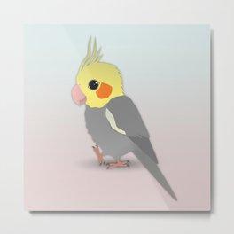 Cute cockatiel Metal Print