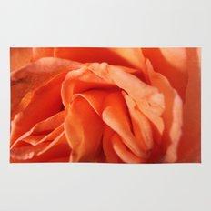 Rosa Vieja Rug