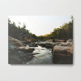 Alligator Creek Metal Print