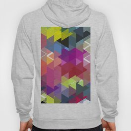 Triangle No. 2 Hoody