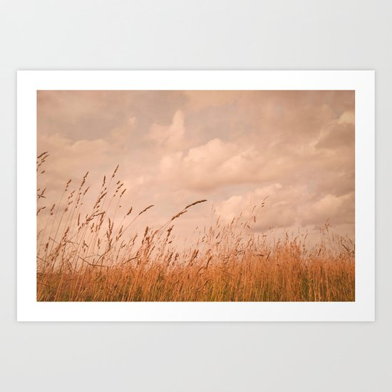 meadow I Art Print