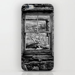 Window with a view iPhone Skin
