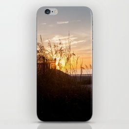 Pathway to the Beach iPhone Skin