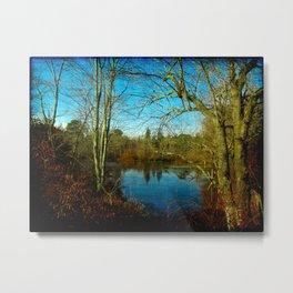 Duck Pond at Tansboro, NJ, USA Metal Print