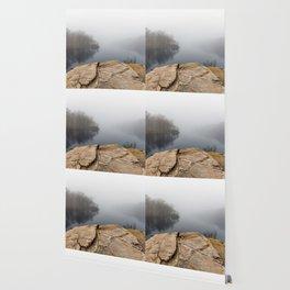 Foggy reflections Wallpaper