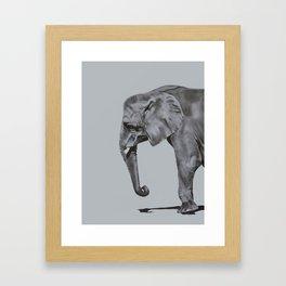 Ivory - Elephant Painting in Black & White Framed Art Print