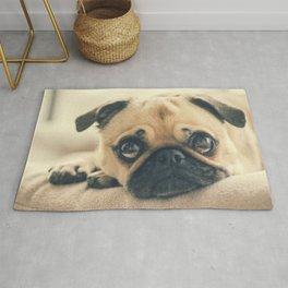Pug In Dog Bed Rug
