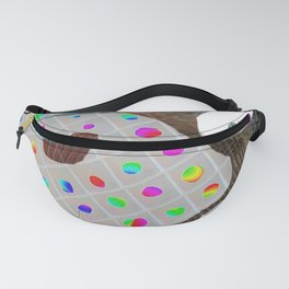 Rainbow Pallet Fanny Pack