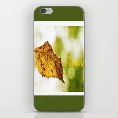 Snapshot of Autumn {Panoramic} iPhone & iPod Skin