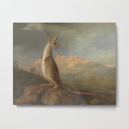 George Stubbs - The Kongouro from New Holland Metal Print