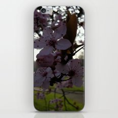 Dark Flowers iPhone & iPod Skin