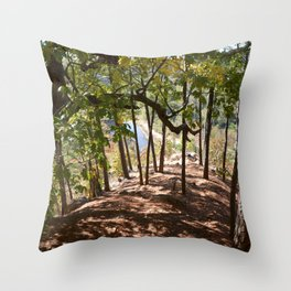 Sparrowhawk Mountain Series, No. 13 Throw Pillow