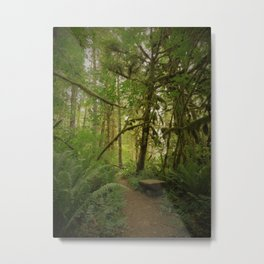 Bench of Serenity in the North Cascades Metal Print