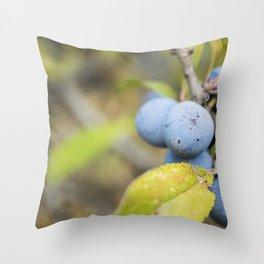 Blue fruits Throw Pillow